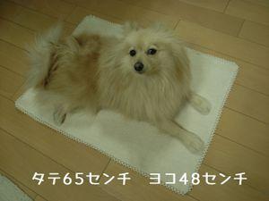 R0015029_2